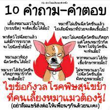🔴 #เชื่อว่าหลายๆคนก็สงสัย... - ข้าวโพดเป็นหมาตัวหนึ่ง