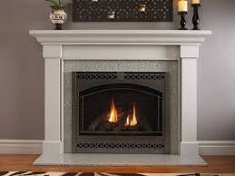 heat glo sl 950 slim line gas fireplace traditional living room