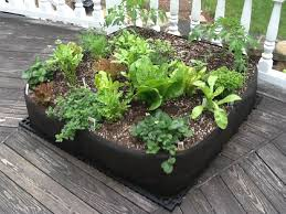 Small Picture Starting A Vegetable Garden From Scratch Uk Best Garden Reference