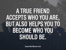 True Friends Quotes Beauteous 48 True Friendship Quotes QuotePrism