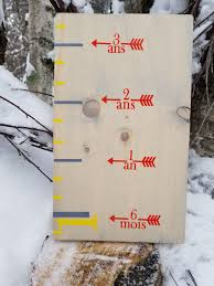 French Classic Height Marking Growth Chart Arrows Growth