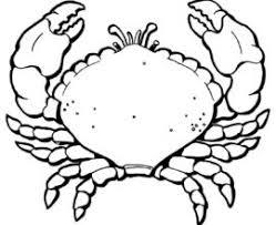 Small Picture Printable Hermit Crab Coloring Pages For Kids CoolbKids Hermit