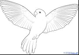 Bird Printable Coloring Pages Bird Coloring Pages To Print Bird