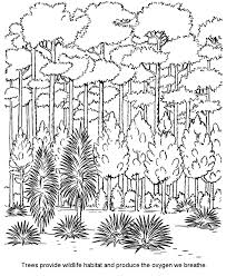 Forest Coloring Pages Printable To Print Out Jokingartcom Forest