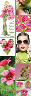 Coral Color Combinations 384 Best Images About Pink Green Coral Color Scheme