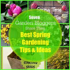 spring gardening tips to spring gardening ideas