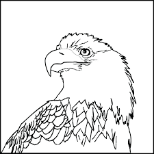 Eagle Coloring Page For Kids Coloring Medium Size Of Eagle Coloring