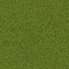 grass texture hd.  Texture Grass Texture To Texture Hd
