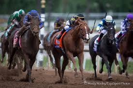 2014 Breeders Cup Charts Judy The Beauty Prevails In Photo For Filly Mare Sprint
