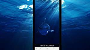 Ytimg - Sea Water 3d Live Wallpaper Apk ...