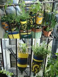 diy plastic bottle herb hanging garden