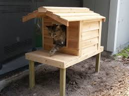 kitchen cat house plans