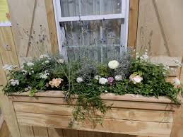 Garden Kitchen Windows Prairie Roses Garden Finding Inspiration The Chicago Flower