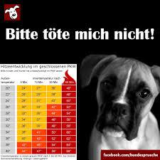 Hundesprüche Startseite Facebook
