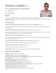 Resume Navigation Beauteous Domingo Cargiulo 28ndOfficer CV