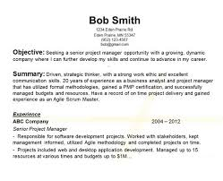 Career Objective On Resume Career Objective On Resume Template Resume Builder 24