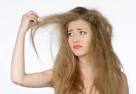 Image result for frizzy hat hair