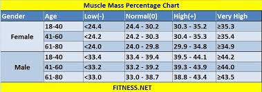Healthy Muscle Mass Percentage Chart Pin On For Me