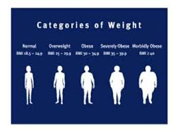 Are You Obese Chart This Blog Is Not One Size Fits All Its About Morbid