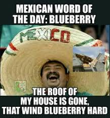 mexican people be like. Wonderful Like Mexican WOTD Blueberry With People Be Like W