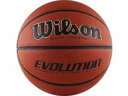 <b>Мяч баскетбольный WILSON Evolution</b> №7 WTB0516