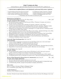 Executive Resume Formats And Examples Inspirational Word Resume