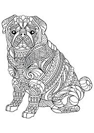 Animal Printable Coloring Pages Animals Coloring Pages As To Plus