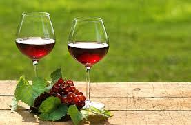 Resultado de imagem para imagens de uvas e vinhos