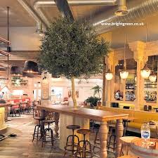 Bespoke Interior Large Artificial Olive Tree made on a single stem for a  restaurant