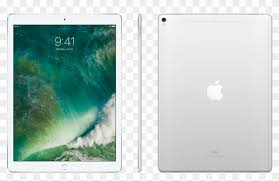 12 9 inch ipad pro wi fi cellular 256gb