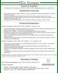 Executive Summary Resume Examples Mesmerizing ExecutiveAssistantResumeexample48greenjpg 48×48 Resume