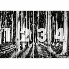 Fotobehang Ghost Forest Simbashopnl