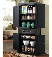 tall kitchen storage cabinet. Perfect Cabinet Tall Storage Pantry Benefits Of Buying Kitchen Cabinet   Intended Tall Kitchen Storage Cabinet G