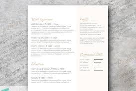 Resume Color Schemes Luxury Sample Software Developer Resume ...