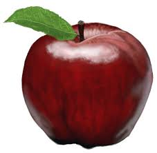 apple fruit drawing. how to draw an apple, step by apple fruit drawing l
