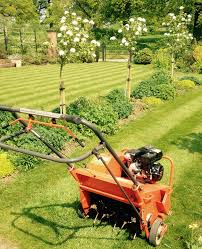 trugreen brackley aeration services