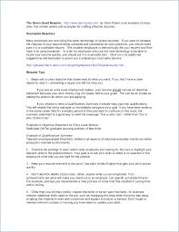 Resume Summary Statement Examples Mesmerizing 60 Fantastic Resume Summary Statement Examples Management