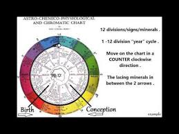 12 Cell Salts Vid 2 The Inez Perry Astrological