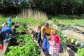 community gardening. Perfect Gardening Fundraising For Your Community Garden And Community Gardening R