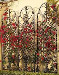 Small Picture The 25 best Wall trellis ideas on Pinterest Trellis Diy garden