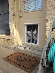 welcome pet independence pet doors