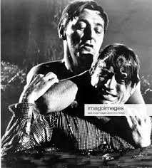 Stockfoto CAPE FEAR ROBERT MITCHUM, GREGORY PECK Date: