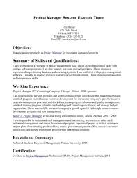 Best Objective Statements Inspiration Resume Objective Statement ...