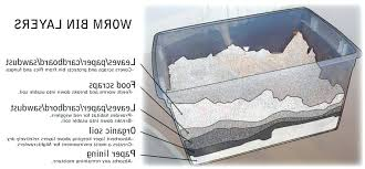 how to make a worm bed photo 4 of how to make a worm bed 4 how to make a worm bed