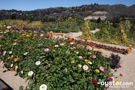 organic garden at the carmel valley ranch carmel valley