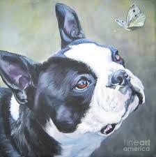 boston terrier painting boston terrier erfly by lee ann shepard