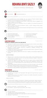 Finance Manager Resume Sample Useful Resume Of Finance Manager Sample On Financial Manager 85