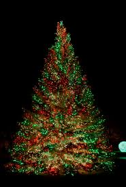 tall christmas tree using colorful c9 christmas lights for accessories home  lighting