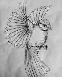 flying bird drawing.  Drawing Hier Zie Je Een Tekening Van Vogel Die Wegvliegt Hij Is Dan Wel Niet  Gekleid Maar Ik Kan Hem Toch Goed Gebruiken For Flying Bird Drawing 5