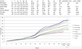 Schnauzer Paradise Growth Charts